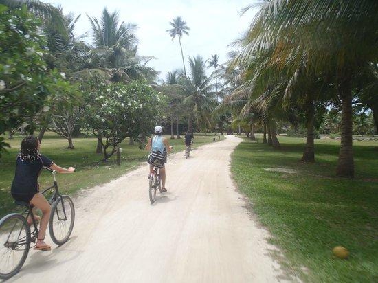 Reef House: on the bikes again