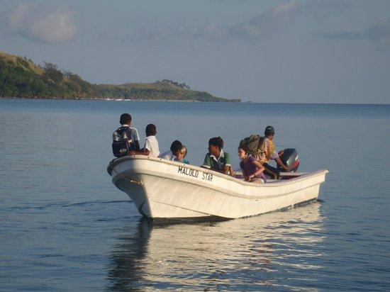 Reef House: school boat