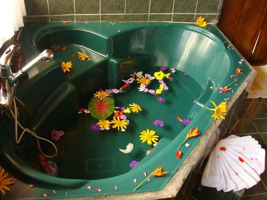 Curubanda Lodge: Bathtub at suite