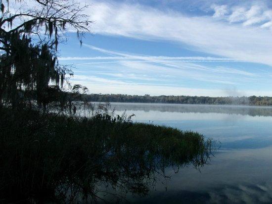 Paynes Prairie Preserve State Park: Lake Wauberg