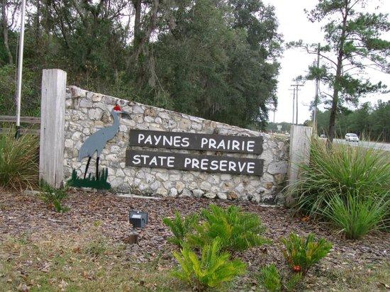 Paynes Prairie Preserve State Park: Paynes Prairie entrance