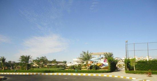 Desert Rose Resort: 4
