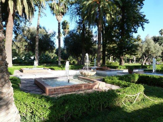 Jardin el Harti