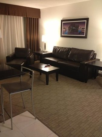 Place Louis Riel Suite Hotel: nice couch!!!