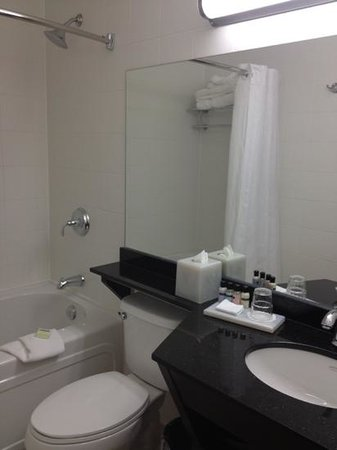 Place Louis Riel Suite Hotel: normal size bathroom except for the nice large tub and towels