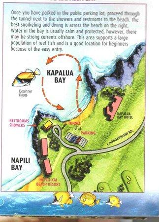 Kapalua, ฮาวาย: SCUBA Map