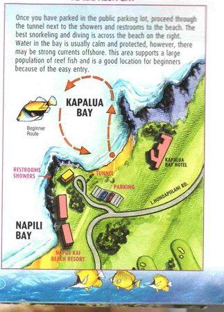 Kapalua, Hawái: SCUBA Map
