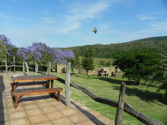 Addo Bush Palace Private Reserve: Mountain views