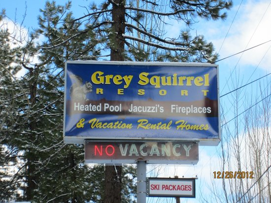 Grey Squirrel Resort: Entrance Sign