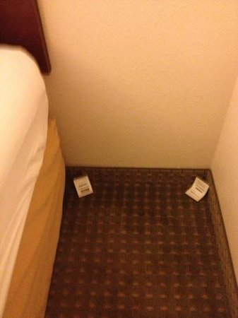 Econo Lodge: roach traps in plain sight
