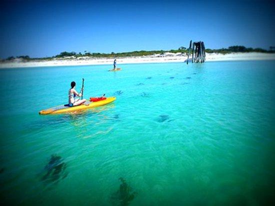 Walkin On Water Paddleboards Lake Gulf Tour