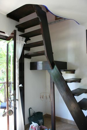 Nueva Vida de Ramiro: inside Pajaro Azul, stairs to the hammock room