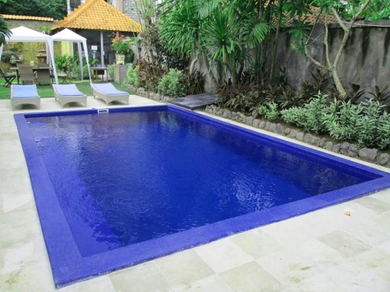 Cafe Locca Homestay: swimming pool