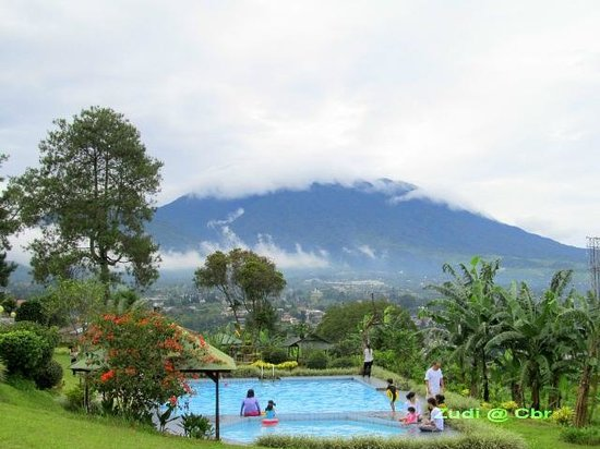 Permata Hati Resort & Organic Farm: pool n mountain