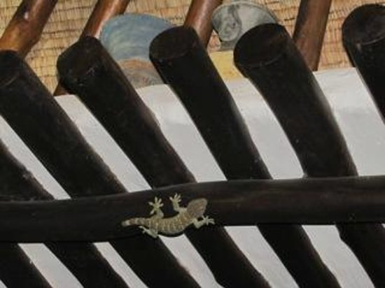 Anankhira Villas: The friendly lizard that watched TV with us