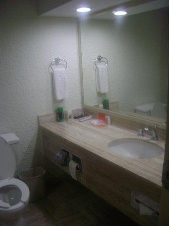 Krystal Cancun: Baño