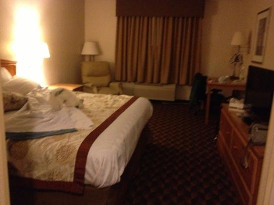 BEST WESTERN PLUS Gateway Inn & Suites: room