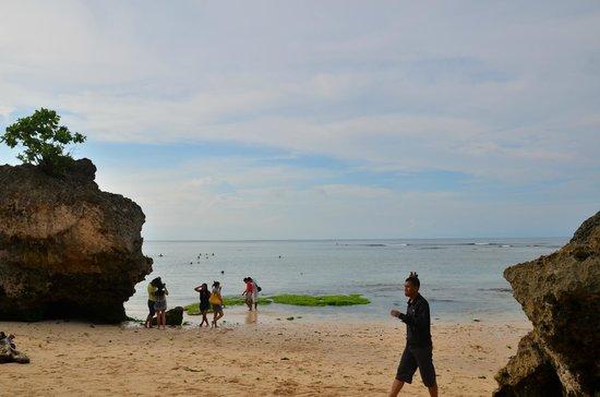Padang Padang Beach: beach