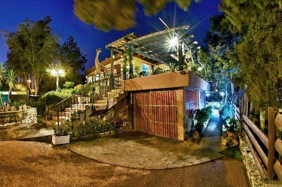 Desert View _ Cohen House: entrance