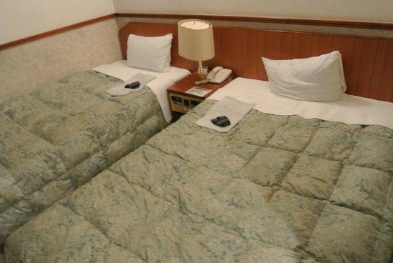 Kishutetsudo Nagoya Sakae Hotel : 客室
