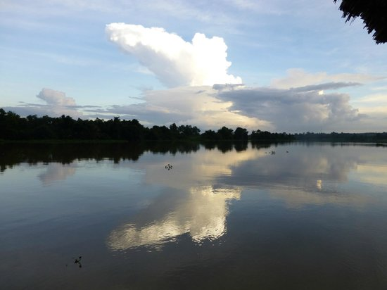 Les Rives by Saigon River Express - Day Tours: view along river