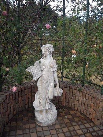 Keisei Rose Garden: バラの丘への途中