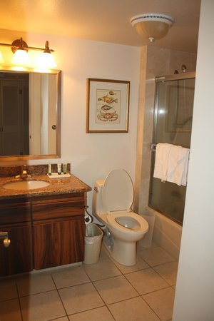 The Residences at Waikiki Beach Tower: Main bathroom