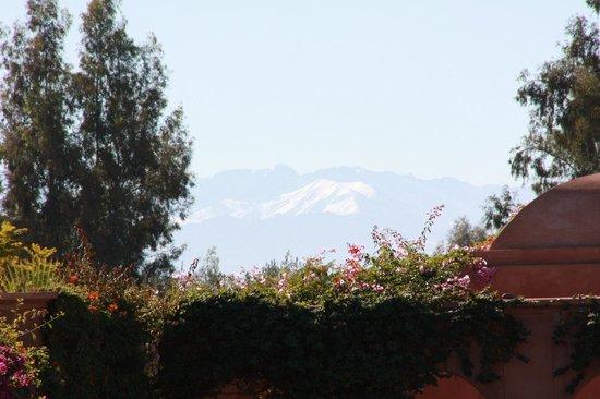 Villa d'Akhdar : vue sur les montagnes enneigées
