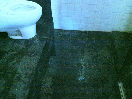 In Da Lodge: bathroom floor; drain is under the toilet