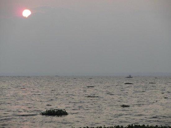 เดอะ ซูริ กุมารกม: homeward bound