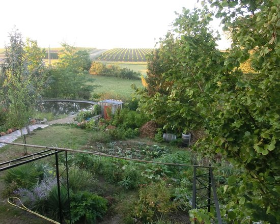 Relais de la Renaissance: Früher Morgen im Garten, vom Obergeshoss augenommen