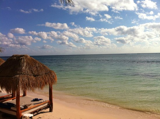 Azul Beach Resort Riviera Maya: the sea - a bit dirty as anyone can see