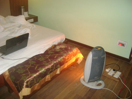 The River Crescent Resort: Room Heater