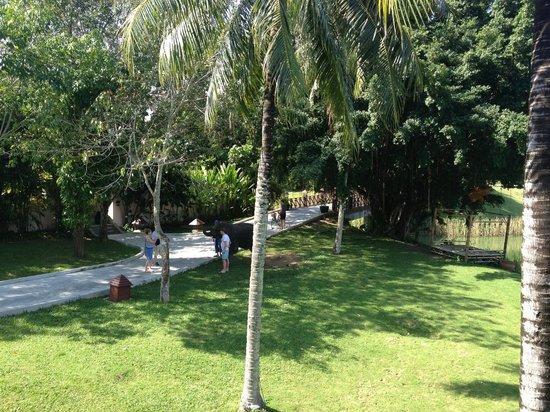 Banyan Tree Phuket: View at breakfast