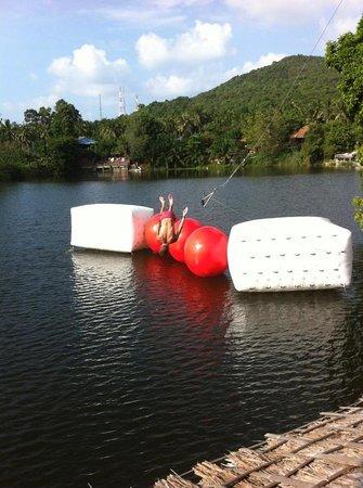 Lake Hut: Wipeout Park
