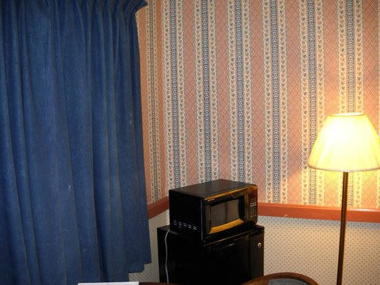 Cherry Lane Motor Inn: Microwave and fridge