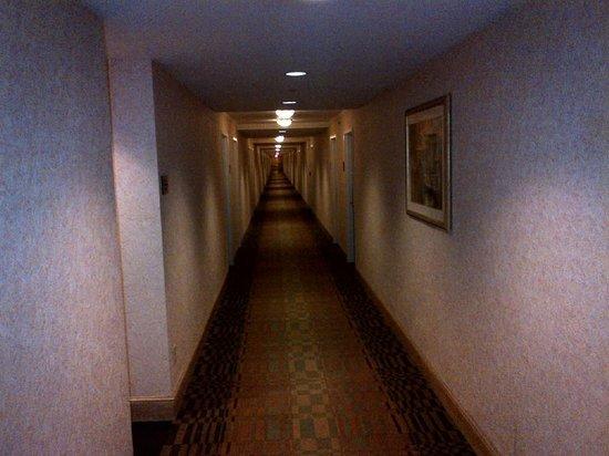 Hyatt Regency Jacksonville Riverfront: Hallway from H*ll