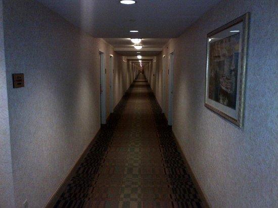 حياة ريجنسي جاكسونفيل: Common area's Hallway goes on forever
