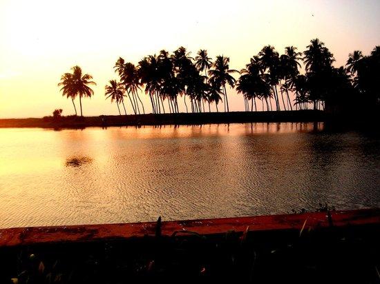 The Lalit Resort & Spa Bekal: Backwater and Beach