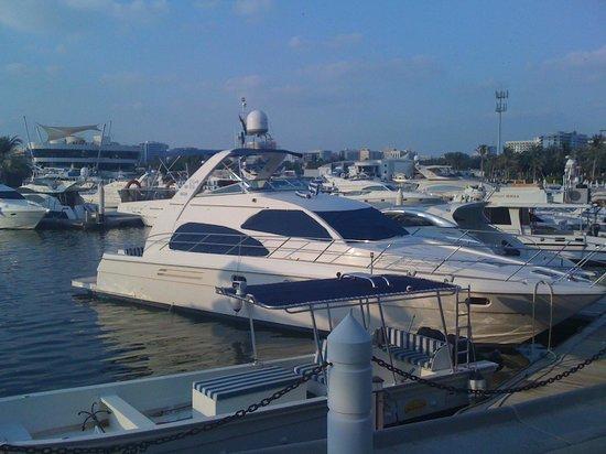 Hyatt Regency Dubai: Yachthafen im Creek