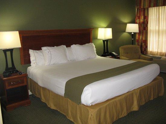 Holiday Inn Express Conover (Hickory Area) : King Bed -- Holiday Inn Express, Conover, NC