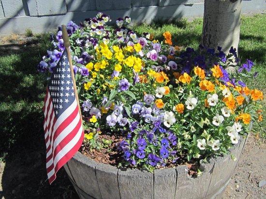 Lake Front Cabins: Summer flower barrels