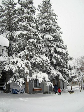 Lake Front Cabins: Winter view of the Studio