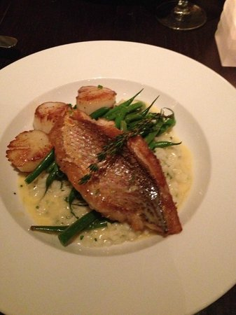 The Blackbird: Snapper with scallops over lemon-thyme risotto