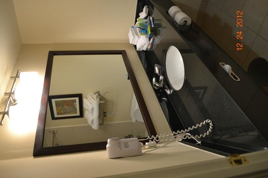 Radisson Hotel Ottawa Parliament Hill: washroom sink