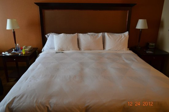 Radisson Hotel Ottawa Parliament Hill: queen bed