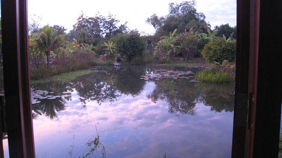 Battambang Resort: Uitzicht vanuit kamer