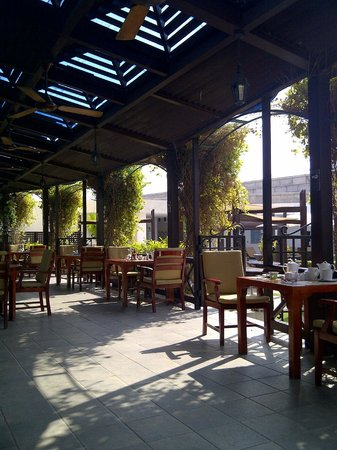 Olivos outdoor patio seating