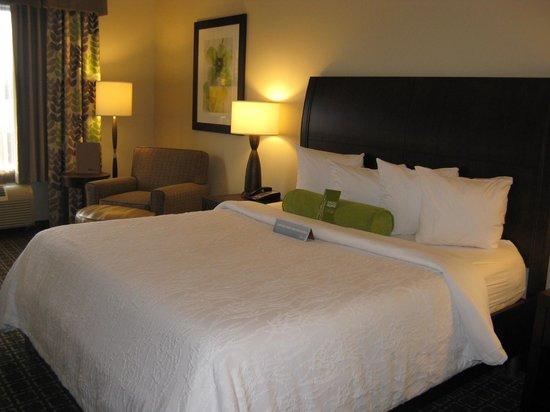 Hilton Garden Inn Raleigh-Cary: King Bed -- Hilton Garden Inn, Cary, NC