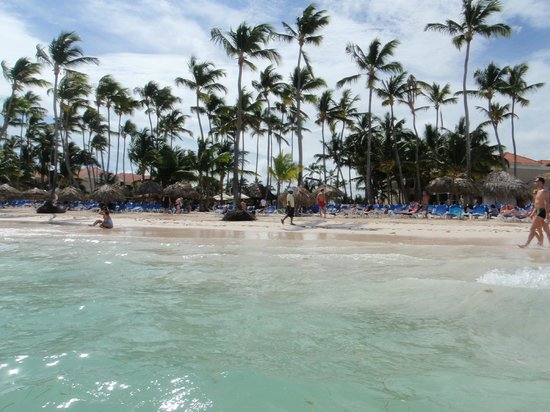 Dreams Palm Beach Punta Cana : beach